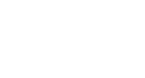 Bigger Bolder Ideas