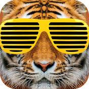 After School App Icon